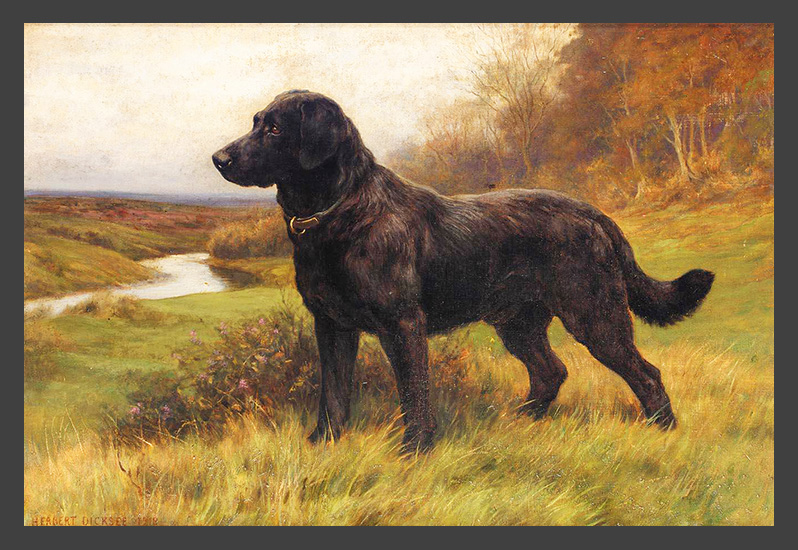 Herbert Thomas Dicksee - On Alert, a Black Labrador