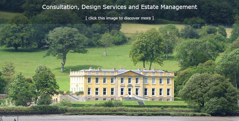 Realty Consultation, Design Services & Estate Management