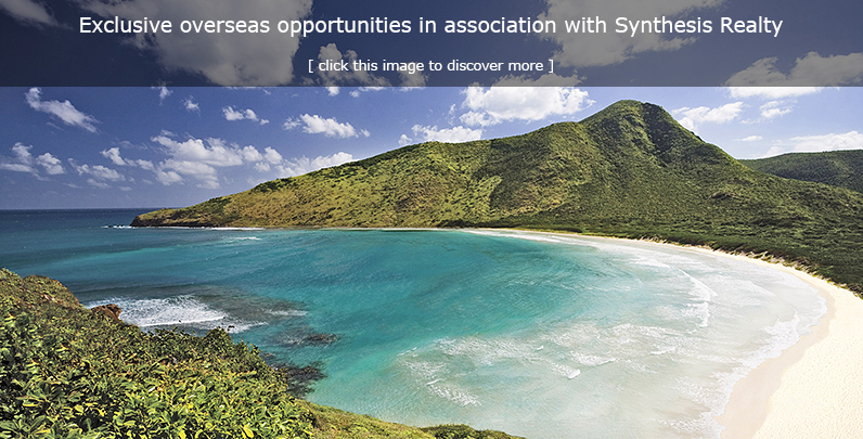 Association with Synthesis Realty Group
